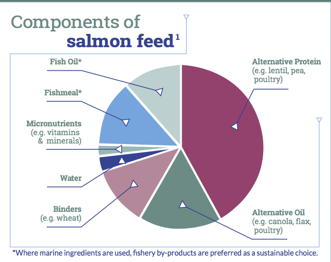 Graph of Salmon Feed Components